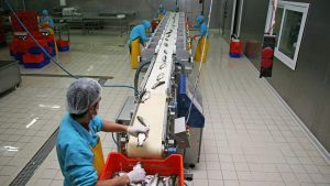SeaFood Cold Storage