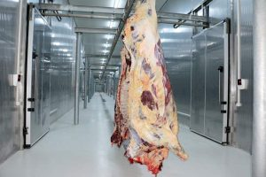 Red Meat Processing Project