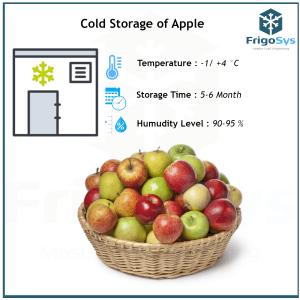 Cold Storage of Apple